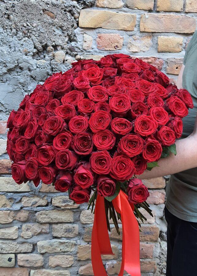 101 Red Naomi rožu pušķis ( 60 cm )